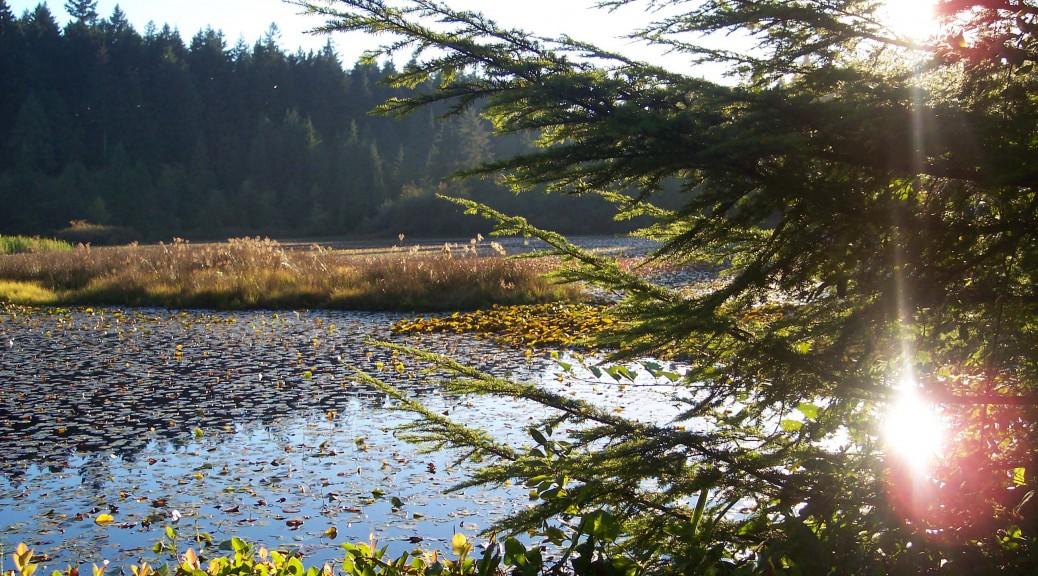 Beaver_Lake_2006